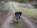 2006-12-25_090_psy